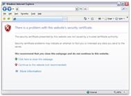 Microsoft Internet Explorer warning about the untrusted SSL certificate